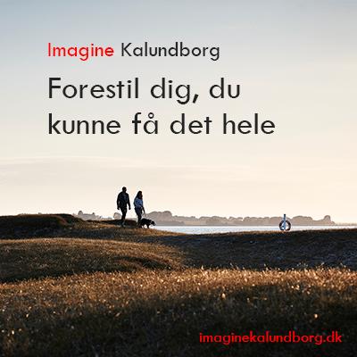 Imagine Kalundborg