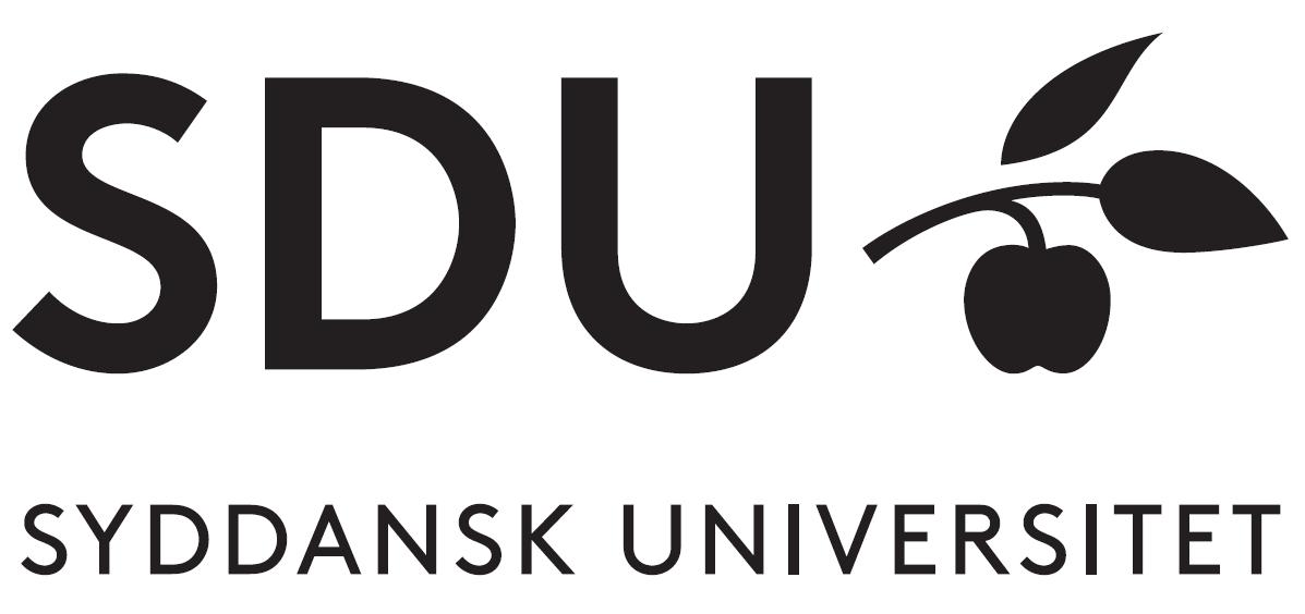 Praktik- Og Projektforløb Med Ingeniørstuderende Fra Syddansk Universitet