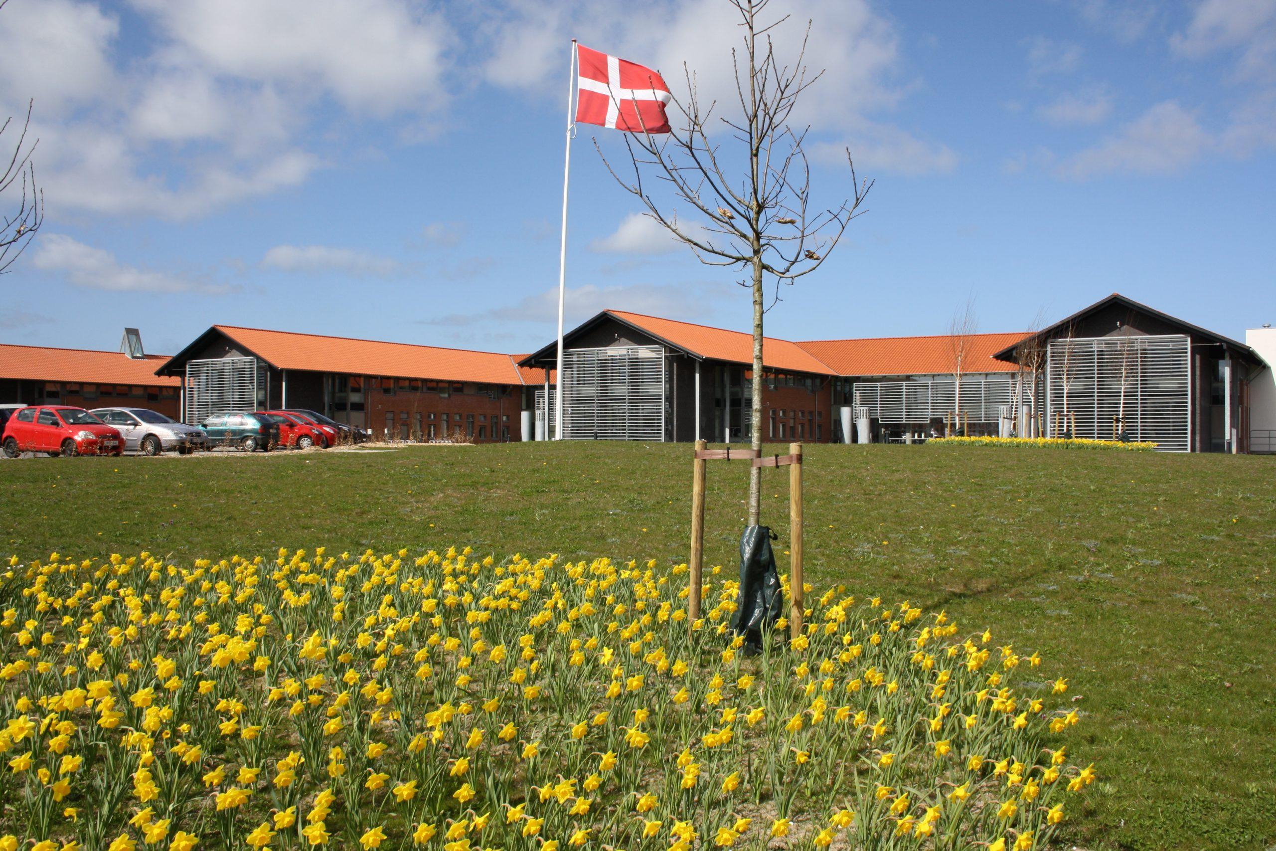 Kalundborg Kommune Forbereder Vifte Af Initiativer For At Støtte Erhvervslivet
